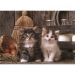 Puzzle   Chatons