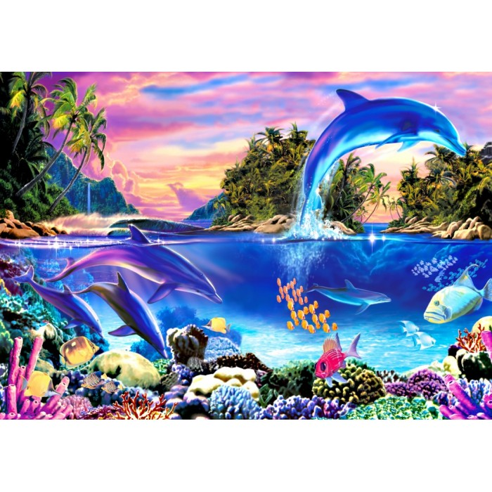 Dolphin Panorama