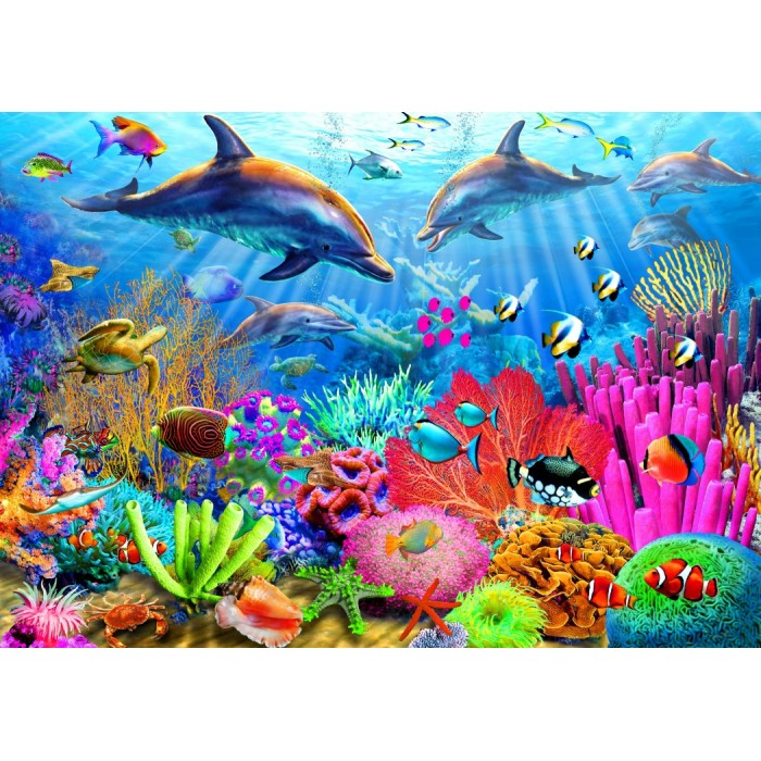 Dolphin Coral Reef