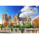 Puzzle  Bluebird-Puzzle-70224 Cathédrale Notre-Dame de Paris