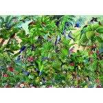 Puzzle  Bluebird-Puzzle-70473 Birds