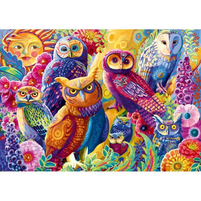 Owl Autonomy