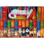 Puzzle   Cat Bookshelf