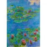Puzzle   Claude Monet - Water Lilies, 1917