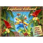 Puzzle   Parrot Palm Clipper