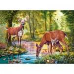 Puzzle  Castorland-030132 Woodland Stream