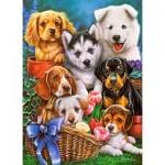 Puzzle  Castorland-030323 Puppies