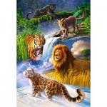 Puzzle  Castorland-103553 Big Cats