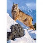 Puzzle  Castorland-103560 Lynx