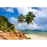 Puzzle  Castorland-103713 Secret Beach, Seychelles