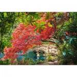 Puzzle  Castorland-103768 Jardin Japonais