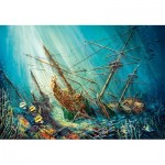 Puzzle  Castorland-103805 Ocean Treasure