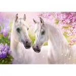 Puzzle  Castorland-104147 Romantic Horses