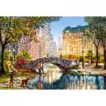 Puzzle  Castorland-104376 Evening Walk Through Central Park