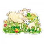 Puzzle  Castorland-120079 L'Agneau et sa Maman