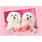 Puzzle  Castorland-13128 Two Doggies in Pink