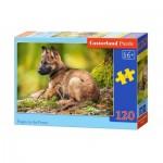 Puzzle  Castorland-13258 Chiot dans la Forêt