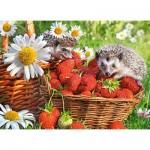 Puzzle  Castorland-222025 Strawberry Dessert