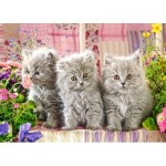 Puzzle  Castorland-27491 Three Grey Kittens