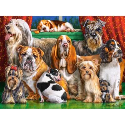 Puzzle Castorland-300501 Dog Club