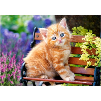 Puzzle Castorland-52240 Ginger Kitten
