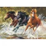 Puzzle  Castorland-52585 Splash