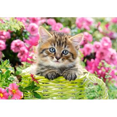 Puzzle Castorland-52974 Kitten in Flower Garden
