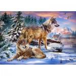 Puzzle  Castorland-53049 Wolfish Wonderland