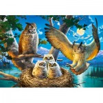Puzzle  Castorland-53322 Owl Family