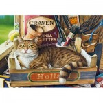 Puzzle  Castorland-53476 Fothergill