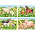 Castorland-B-04416 4 Puzzles - Animaux de la Ferme