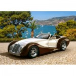 Puzzle   Roadster in Riviera