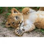 Puzzle  Clementoni-29745 WWF - Lionceau