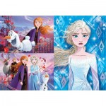 3 Puzzles - Disney Frozen 2 (3x48)