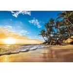 Puzzle  Clementoni-31681 Soleil Couchant sur une Plage des Tropiques