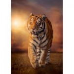 Puzzle  Clementoni-31806 Tigre