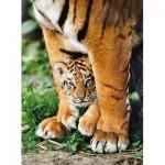 Puzzle  Clementoni-35046 Bébé Tigre du Bengale