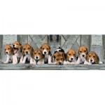 Puzzle  Clementoni-39435 Beagles