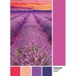 Puzzle  Clementoni-39493 Pantone - Violet