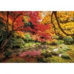 Puzzle   Autumn Park