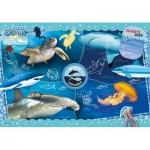 Ocean Explorer - Supercolor Puzzle