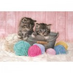 Puzzle   Sweet Kittens