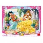 Dino-30308 Puzzle Cadre - Disney Princess