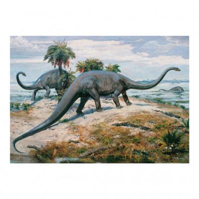 Puzzle Dino-53202 Dinosaures