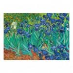 Puzzle  Dino-53216 Vincent Van Gogh - Les Iris