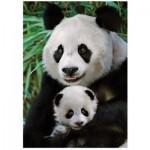 Puzzle  Dino-53256 Panda