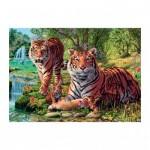 Dino-53262 Secret Puzzle - Tigres