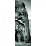 Puzzle  Dino-54536 Eléphant