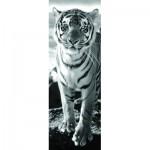 Puzzle  Dino-54543 Tigre