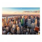 Puzzle  Dino-56309 New York